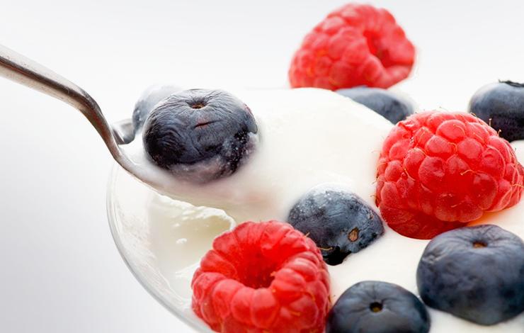 Dicas da Nutri: Probióticos