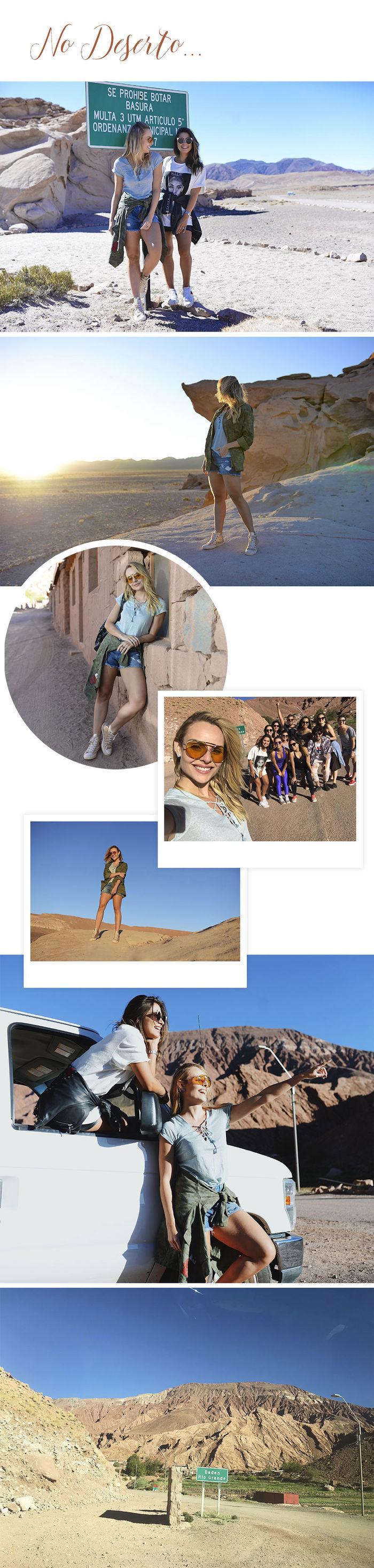 Diário de Bordo: Layla no Atacama - No deserto