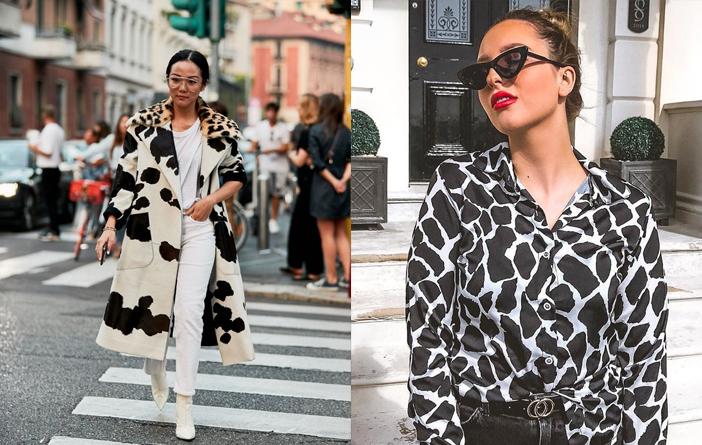 Animal Print – Estampa de Vaca